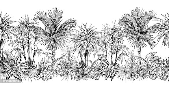 Seamless horizontal border with sketchy palm trees and tropical foliage. Black and white ink drawing. Vector illustration.