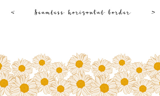 Seamless horizontal daisy border with bronze outline isolated on white background