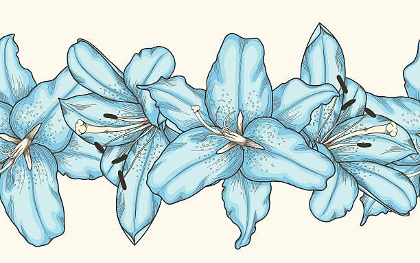 nahtlose horizontal frame-element blue lilien blumen - pastellhosen stock-grafiken, -clipart, -cartoons und -symbole