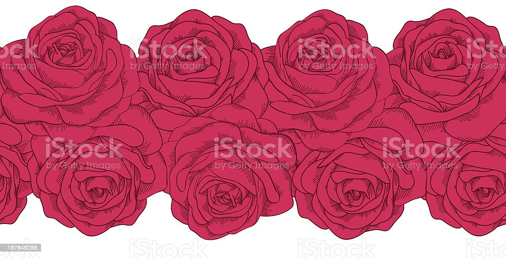 seamless horizontal frame element of roses with outline. royalty-free stock vector art