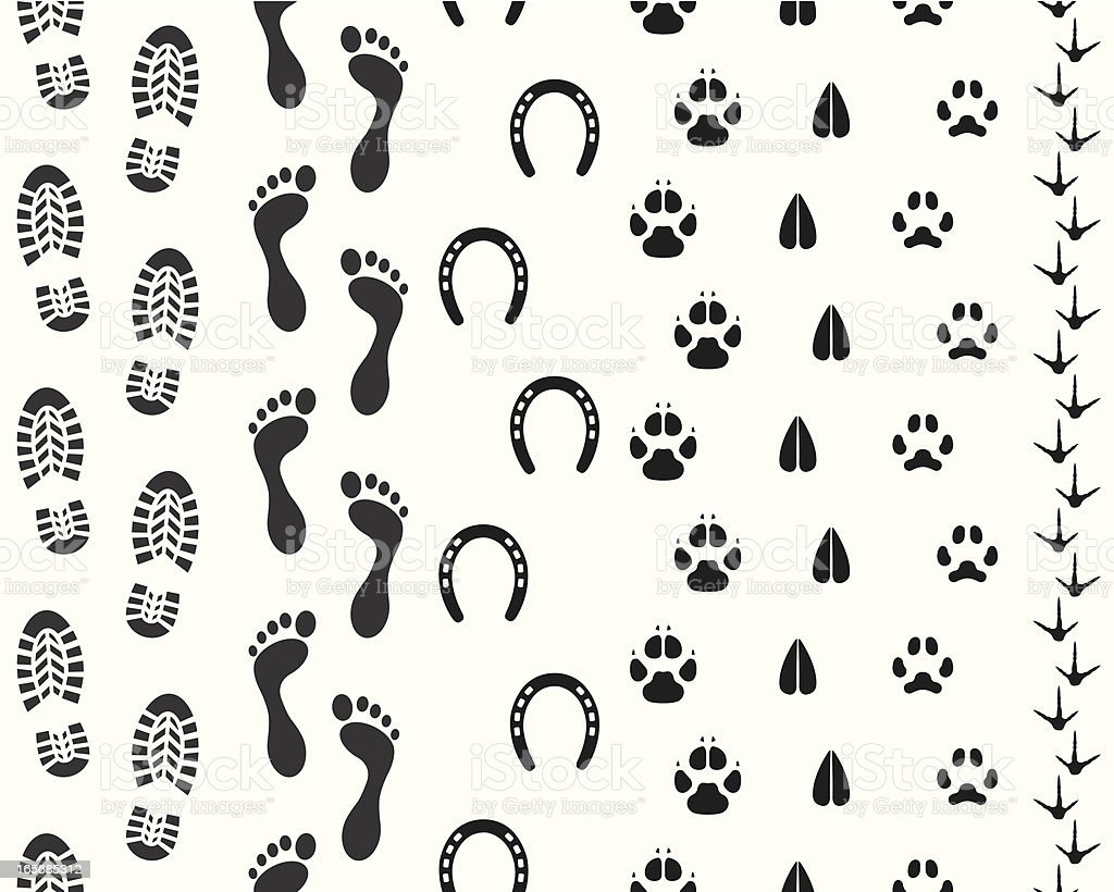 Seamless Human and Animal Footprints vector art illustration