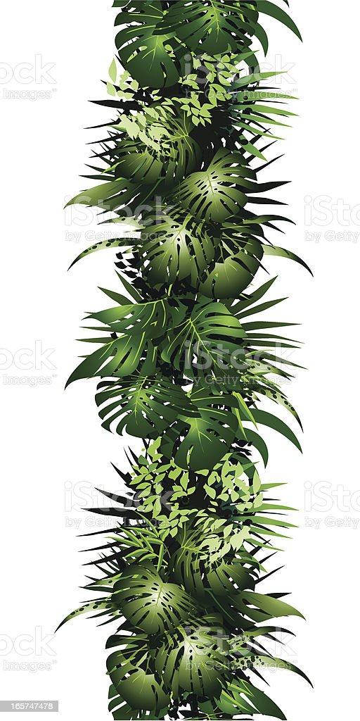 seamless jungle bordure royalty-free seamless jungle bordure stock vector art & more images of anthurium