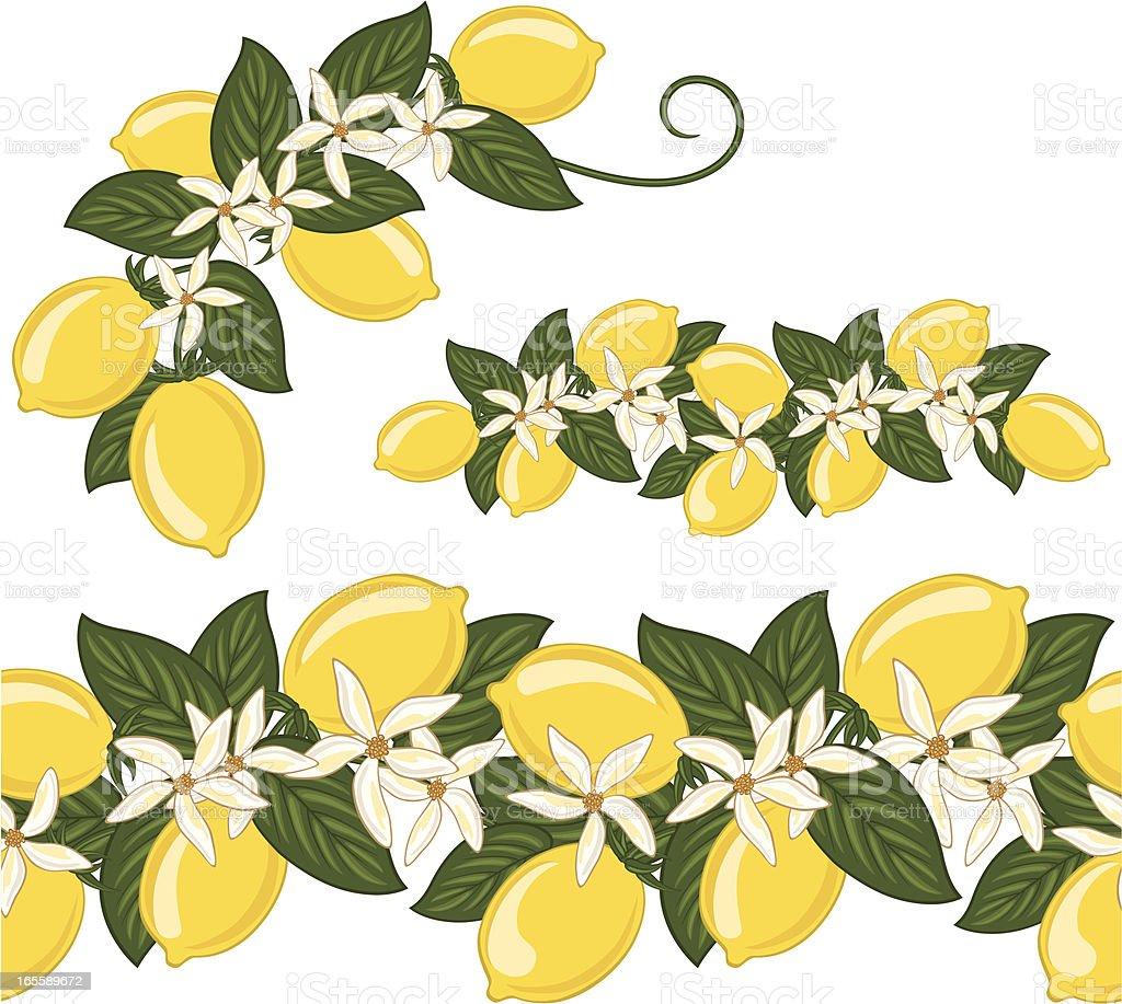 Seamless Lemons Border royalty-free seamless lemons border stock vector art & more images of citrus fruit