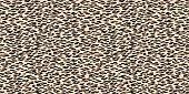 Seamless leopard pattern. Animal skin texture background