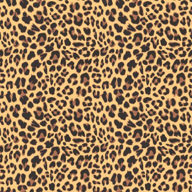 ilustraciones, imágenes clip art, dibujos animados e iconos de stock de leopardo patrón sin costuras de diseño, ilustración vectorial - textura de pieles