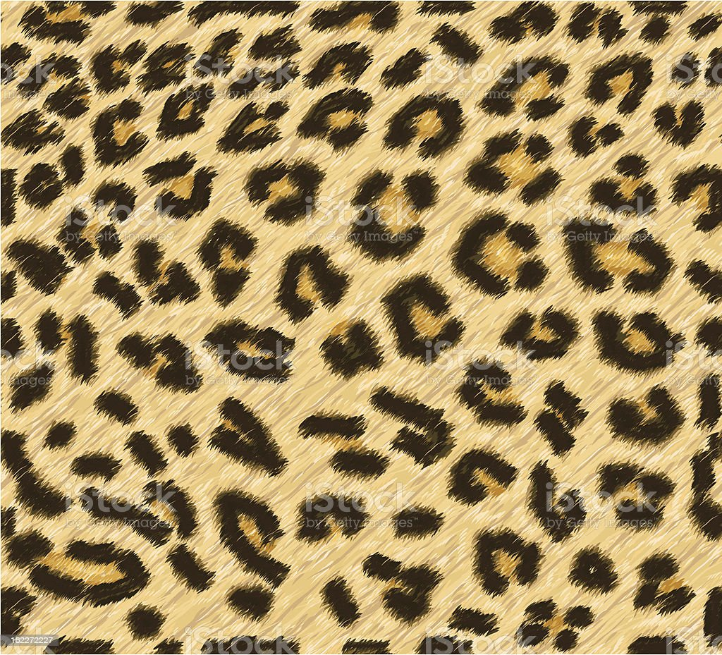 Seamless leopard skin pattern vector art illustration