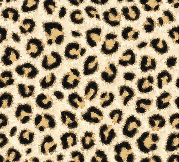ilustraciones, imágenes clip art, dibujos animados e iconos de stock de piel de leopardo patrón sin costuras - textura de leopardo
