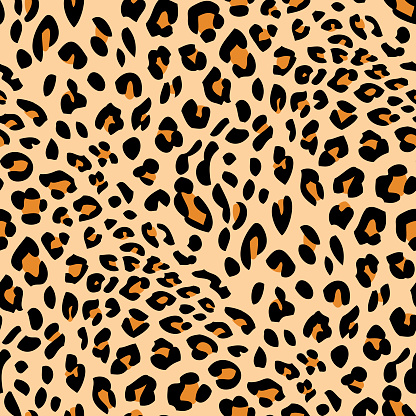 Seamless leopard skin pattern