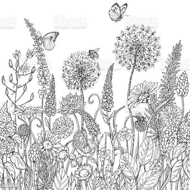 Seamless line pattern with wildflowers and insects vector id534316292?b=1&k=6&m=534316292&s=612x612&h=cb1y6laewefjk22m16bmpdi2ne7qk9qhnbild0q8jdw=