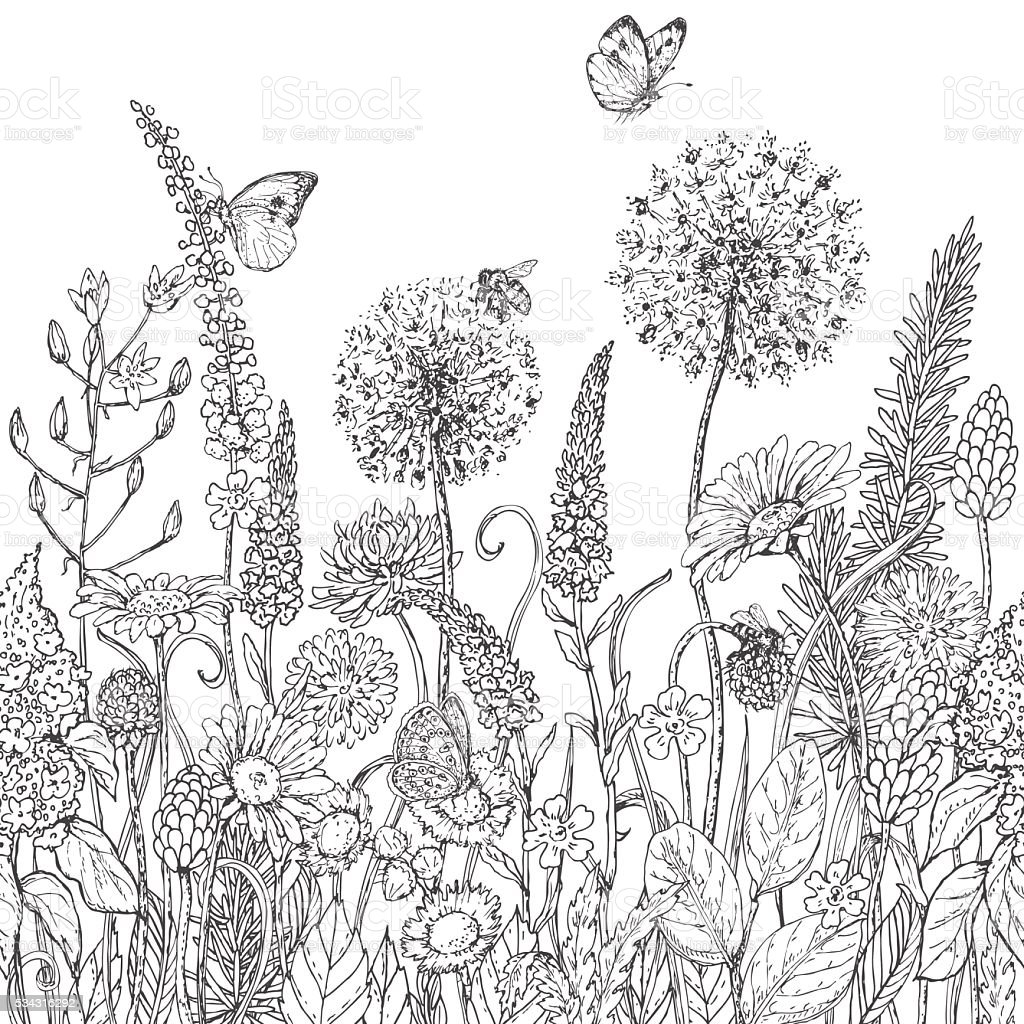 Seamless line pattern with wildflowers  and insects vector art illustration