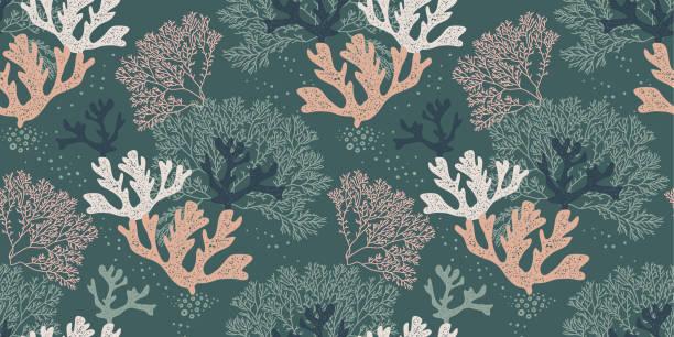 natürliche musterdesign mit korallen und algen - algen stock-grafiken, -clipart, -cartoons und -symbole