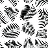 Palm frond seamless background concept.