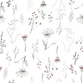 Seamless patterm based on color hand painted ink leaves, flowers and herbs with rosehip, thistle and dill.