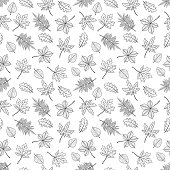 Seamless pattern of hand drawn autumn leaves. Background with maple, oak, elm, chestnut, Japanese maple and rhus typhina. Vector illustration. Retro style .