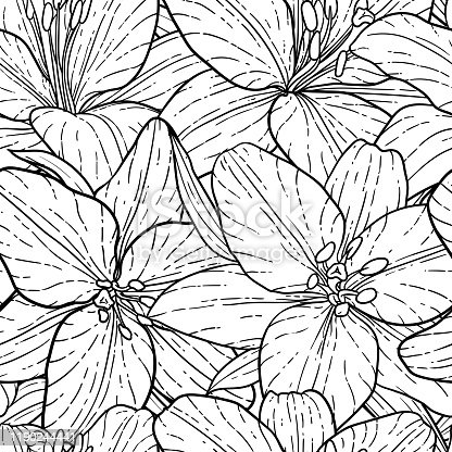 seamless pattern, beautiful monochrome black and white lily. Hand-drawn. design greeting card and invitation of the wedding, birthday, Valentine s Day, mother s day and other holiday.