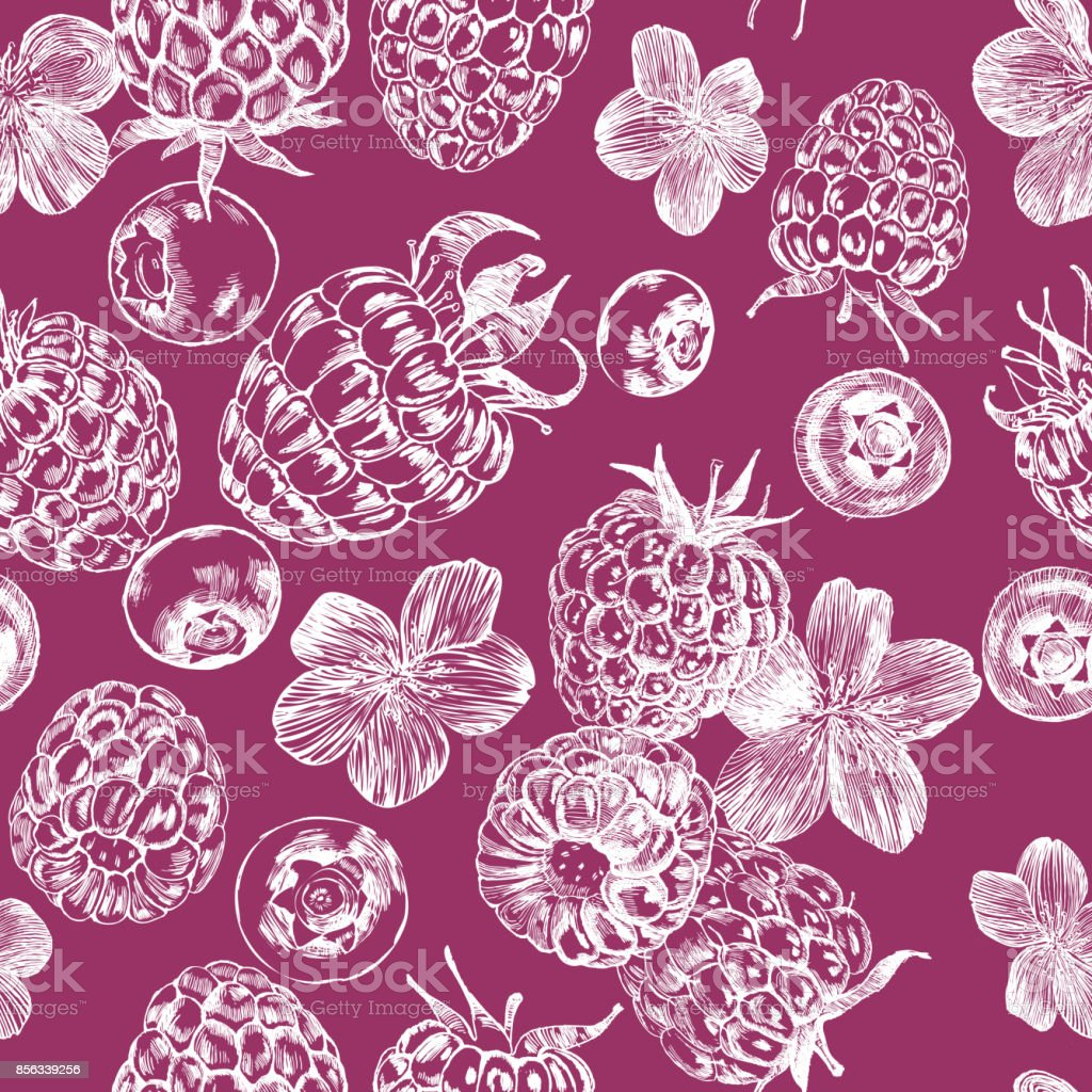 Seamless pattern. Botanical illustration of raspberries, blueberries and inflorescences. Engraving sketch. vector art illustration