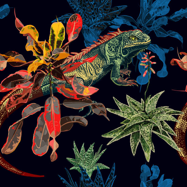 Seamless pattern. Cacti, ficus and iguana. Exotic tropical flowers, leaves and lizard on black background. Seamless pattern. Cacti, succulents, ficus and iguana. Template for design fabrics, textiles, paper and wallpaper. Floral decoration. exotic animals stock illustrations