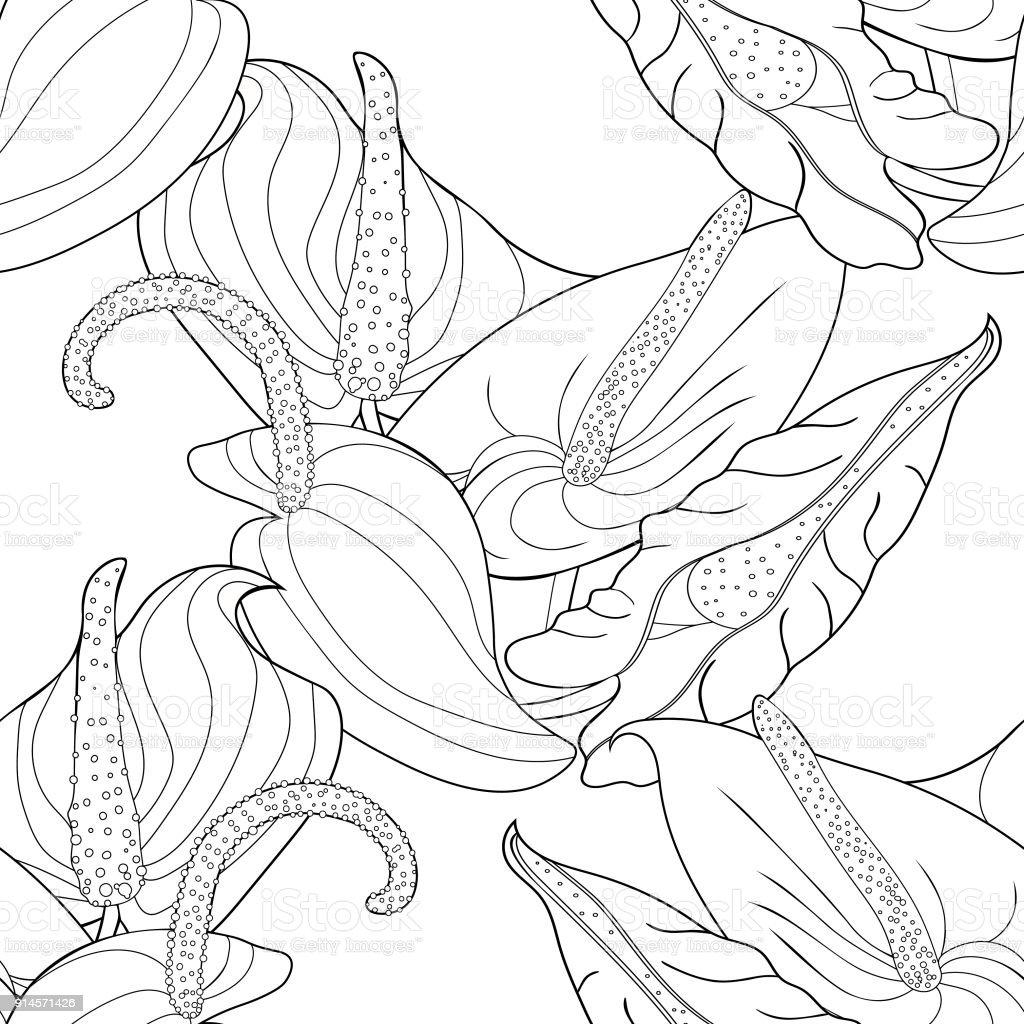 Dikişsiz Desen Antoryum çiçek Flamingo Vektör çizim Boyama Stok