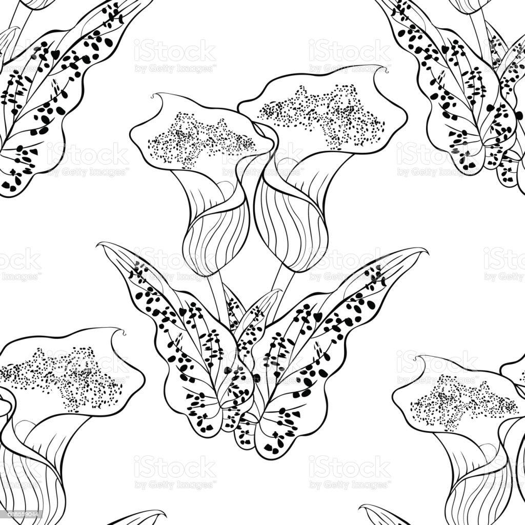 Coloriage Fleur Arum.Modele Sans Couture Calla Picasso De Fleur A Colorier Illustration