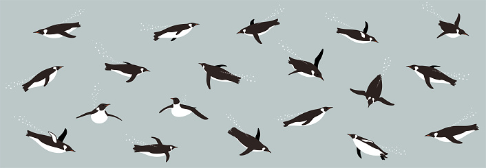 seamless pattern, Emperor Penguins swimming in the sea