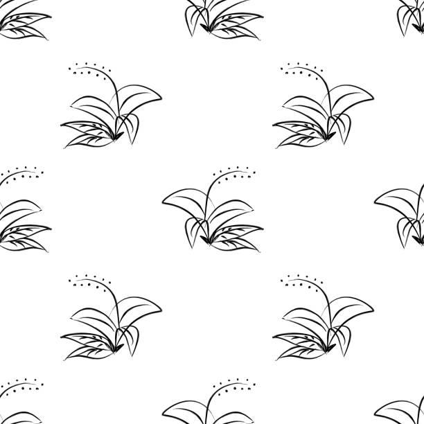 bildbanksillustrationer, clip art samt tecknat material och ikoner med sömlös mönster blommig vektor illustration bakgrund i svart och vitt monokrom stil. - swedish nature