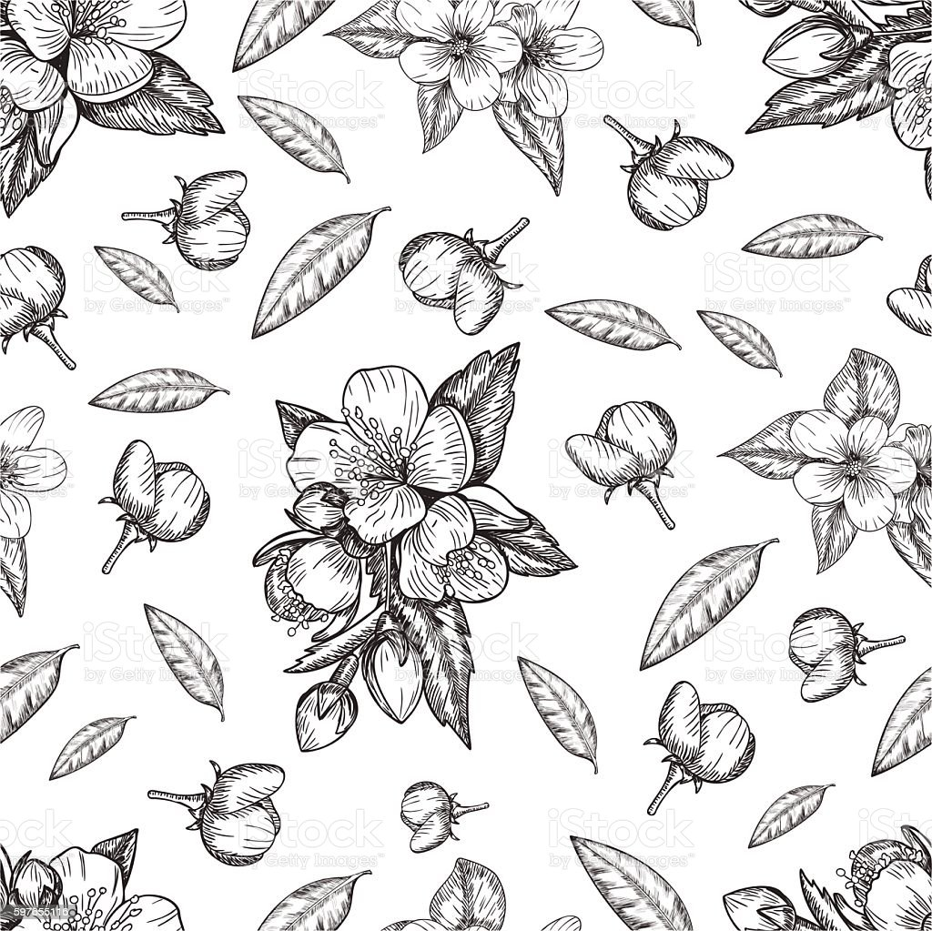 Seamless pattern flowers and leaves of the apple tree . Vector vector art illustration