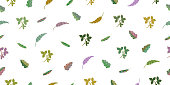 Seamless pattern from leaves of tropical plants. Vector hand drawing illustration.