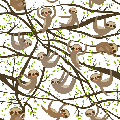 seamless pattern funny and cute smiling Three-toed sloth on green branch tree creeper, isolated white trendy background. Vector