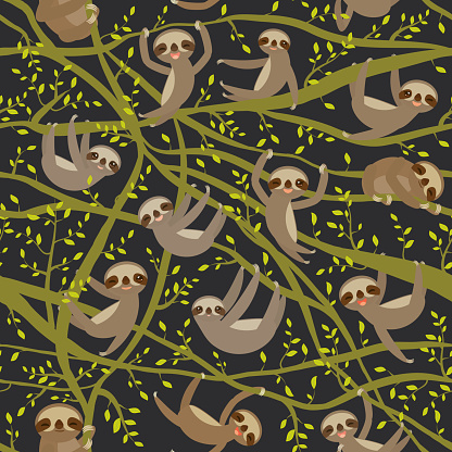 seamless pattern funny and cute smiling Three-toed sloth on green branch tree creeper, darck green trendy background. Vector