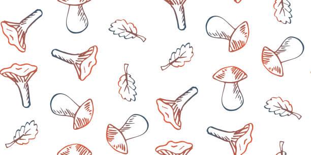 bildbanksillustrationer, clip art samt tecknat material och ikoner med sömlös mönster handritad doodle svamp på vit bakgrund. - höst plocka svamp