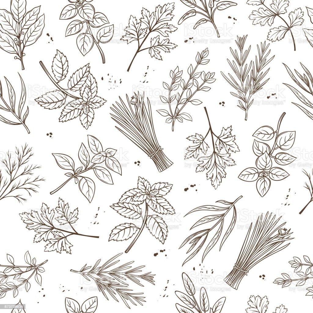 Seamless pattern herbs vector art illustration
