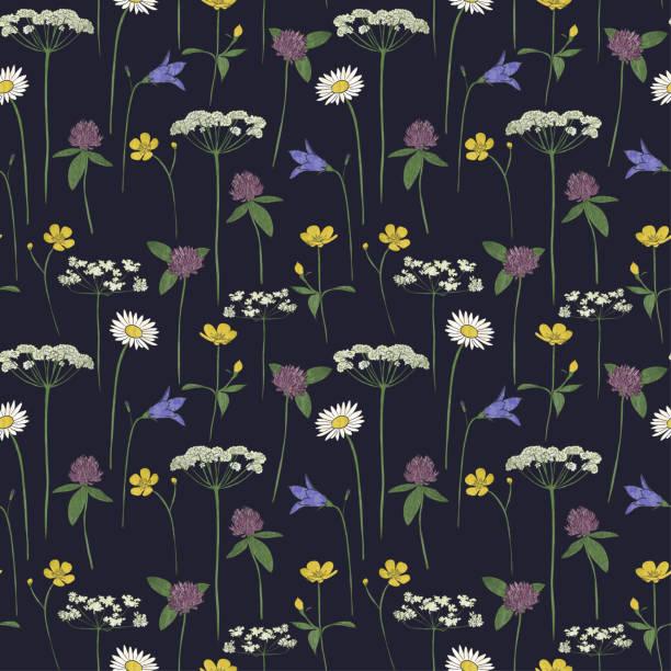 bildbanksillustrationer, clip art samt tecknat material och ikoner med sömlösa mönster mid sommar blommor - summer sweden
