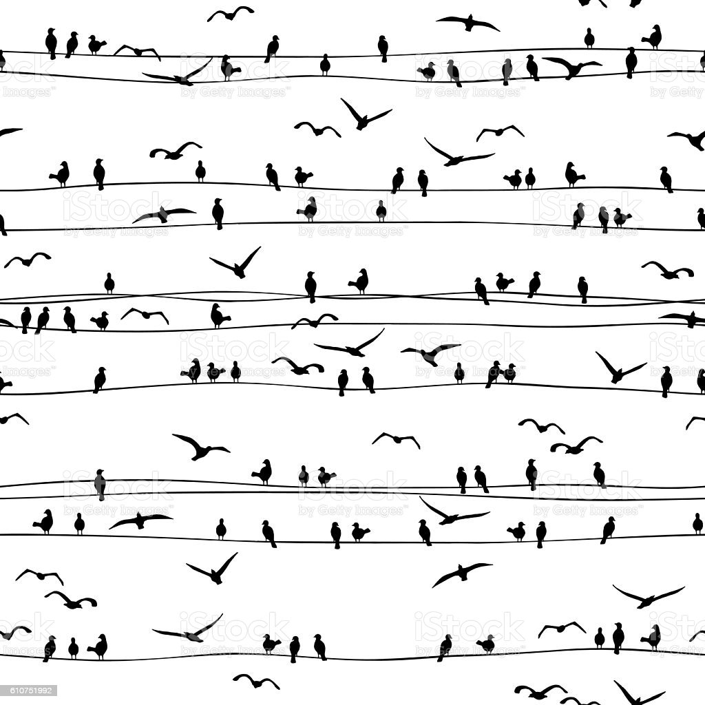 Seamless pattern of birds sitting on electrical wires vector art illustration