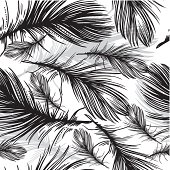 seamless pattern of black and white feathers