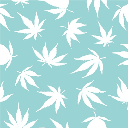 Seamless pattern of cannabis leaves on a blue background. White hemp leaves on a blue background. Vector illustration