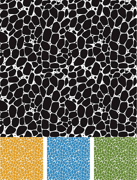 seamless pattern of cellular structure - pebbles stock illustrations, clip art, cartoons, & icons