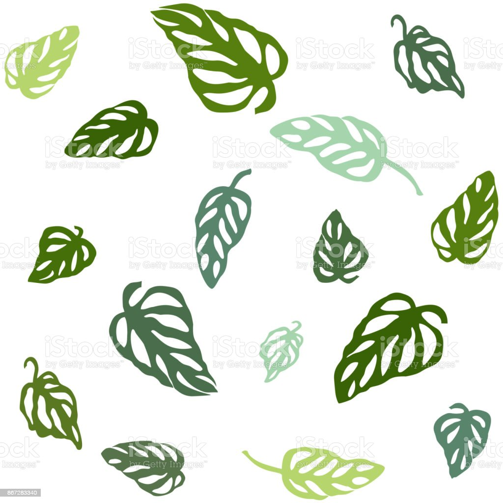 Seamless pattern of colorful leaves Monstera, isolated on white background. vector art illustration