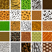 Seamless pattern of different animal skin