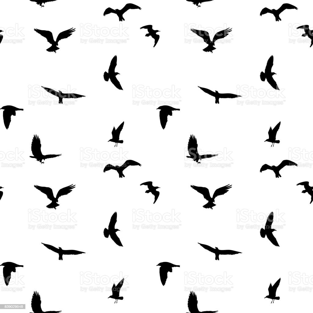 Seamless Pattern Of Flying Birds Silhouettes On White ...