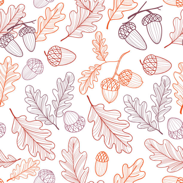 Seamless pattern of oak leaves and acorns. Autumn line drawing. Vector Seamless pattern of oak leaves and acorns. Autumn line drawing. Vector autumn patterns stock illustrations