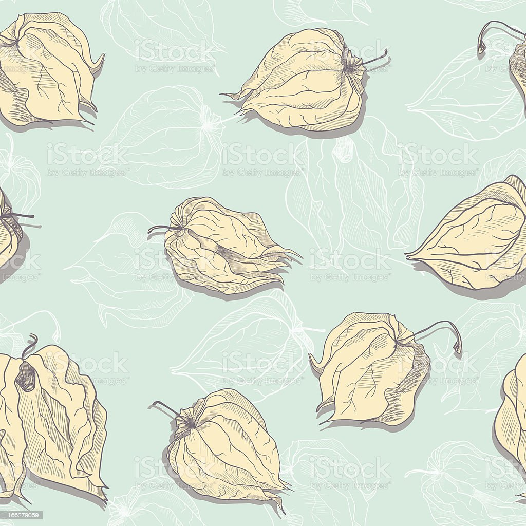 seamless pattern of physalis royalty-free stock vector art