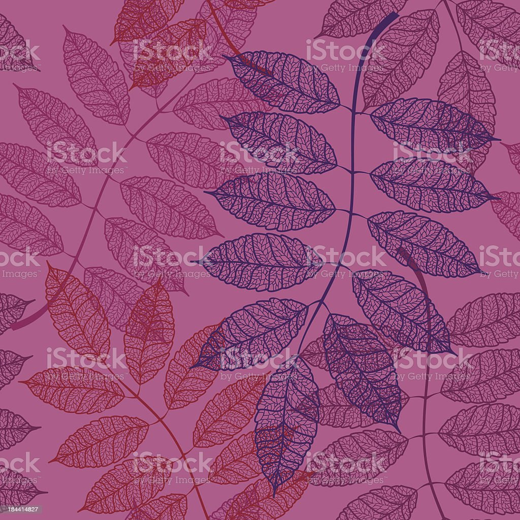 Seamless pattern of rowan leaves royalty-free stock vector art