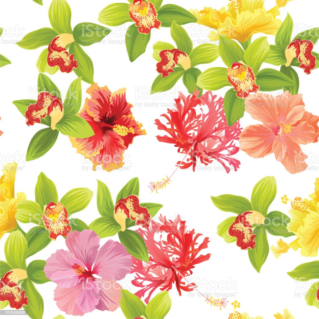 Seamless pattern of tropical orchid and hibiscus flowers background seamless pattern of tropical orchid and hibiscus flowers background template royalty free seamless pattern izmirmasajfo