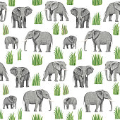Seamless pattern of vector savannah safari animals. African elephants, branches, grass, herbs, bush and palm tree leaves isolated on a white background. Wallpaper, batik, chintz print