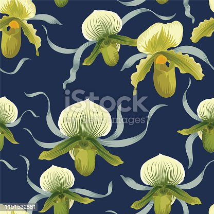 Seamless pattern of Venus slipper orchid flower on white background. Vector set of exotic tropical garden for holiday invitations, wedding, greeting card and fashion design.
