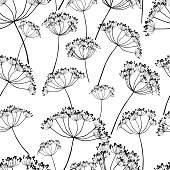 Vector background of silhouettes of umbellate plants.