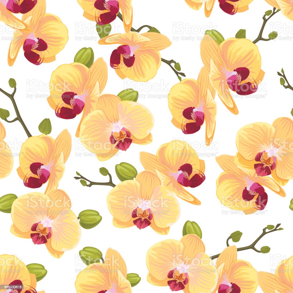 Seamless pattern of yellow orchid flower on white background template. royalty-free seamless pattern of yellow orchid flower on white background template stock vector art & more images of abstract