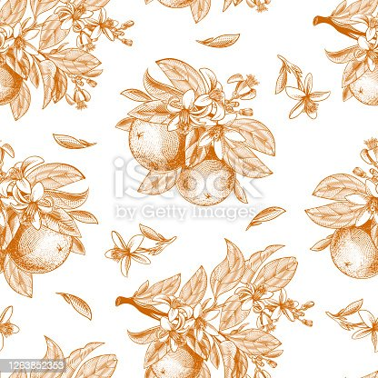 Vector seamless pattern with ink hand drawn orange fruit, leaves, branches and blooming flowers. Botanical drawing sketch of tropical citrus for juice packaging, label, menu in engraving vintage style