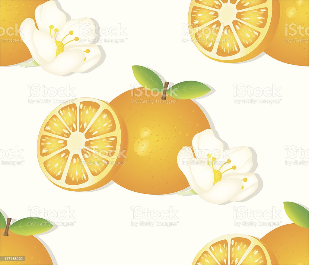 seamless Pattern: Oranges with Flower. royalty-free stock vector art