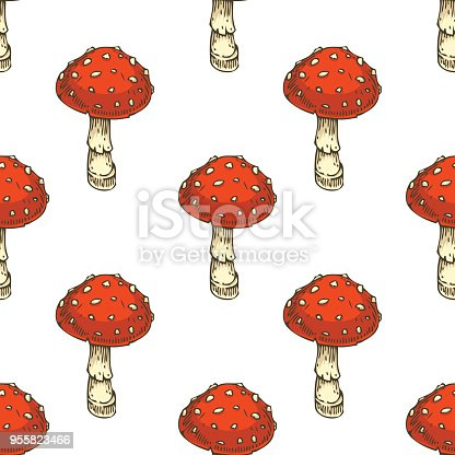 Seamless Pattern with Fly Agaric. Red Amanita Mushroom. Hand Drawn Illustration. Isolated